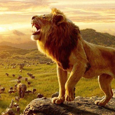 disney-lion-king