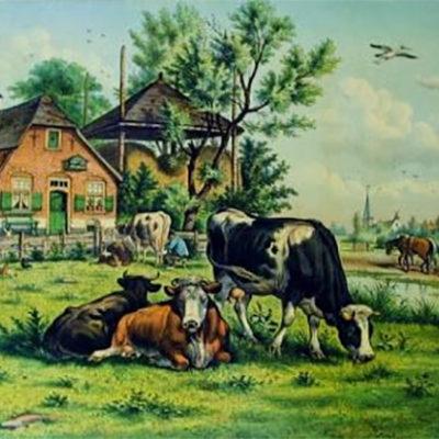 wynias-week-42-de-boerderij