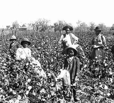 zwarte-familie-in-katoenvelden-in-het-zuiden-van-de-verenigde-staten