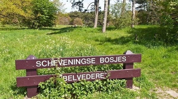 scheveningse-bosjes-belvedere
